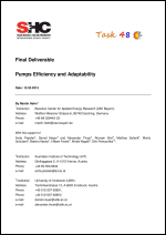 Final Report on Pumps Efficiency and Adaptability
